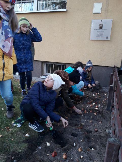 Oglądasz zdjęcia związane z artykułem: Tulipanowy ogródek